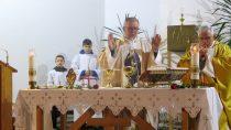 Wparafii św.Barbary wWieluniu rodzi się kult św.Rity