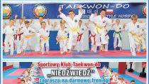 Wferie zadarmo potrenuj taekwon-do