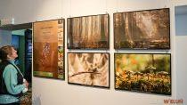 """Wystawa fotografii przyrodniczej """"Wielki łuk Warty wobiektywie"""" Piotra Dudka nadal jest dostępna wmuzeum dla zwiedzających"""
