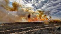 25 zastępów straży pożarnej gasiło pożar weWróblewie