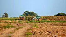 Pieniądze narozwój usług rolniczych. Ruszył nabór wniosków
