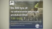 ARiMR: 300 tys. zł naodtworzenie potencjału produkcji rolnej