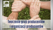Nawet 100 tys. euro co roku dla nowych grup producentów