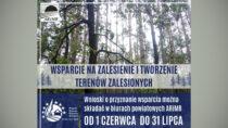 Weź pieniądze naposadzenie lasu – informuje ARiMR