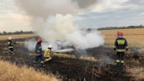 Wmiejscowości Mokrsko spłonął samochód osobowy