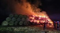 Sześć zastępów straży gasiło pożar wmiejscowości Ożarów