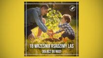 18 września sadzimy drzewa. Odbierz sadzonki wNadleśnictwie Wieluń
