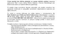 VII Turniej piłki nożnej w Mokrsku